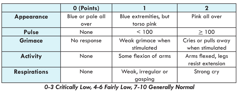 Develop Your Version Of The Apgar Score